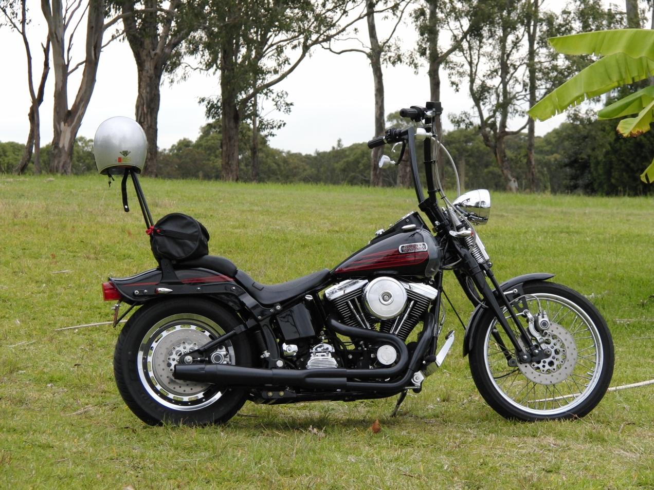 harley-davidson-softail-springer-1995-bad-boy-FXSTSB-evolution-1340-thunderheader-carlini-evil-apehangers-cycle-vision-tall-sissybar-joker-machine-mirrors-psalmistice_CIMG2177
