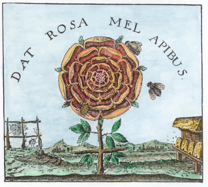 Engraving from Robert Fludd, Summum bonum, Frankfurt 1629